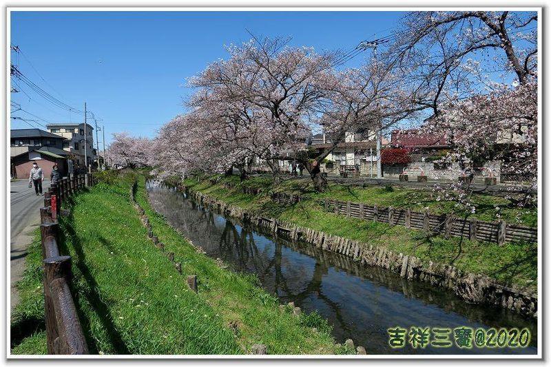 2020-03-25 川越 31.JPG